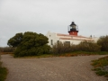 Péninsule Valdés - Punta Delgada