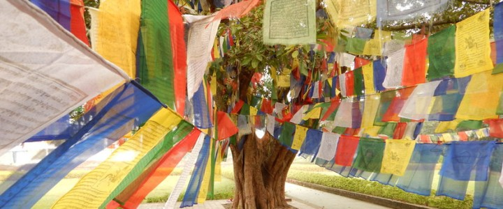 Lumbini, lieu de naissance de Bouddha