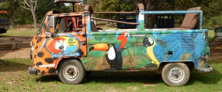 La vie sauvage du Pantanal