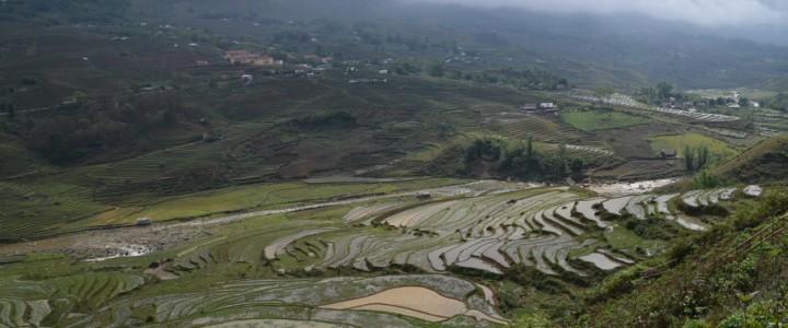 Au nord-ouest du Vietnam, trek autour de Sa Pa