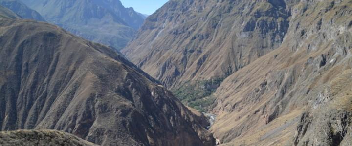 Au fond du canyon de Colca